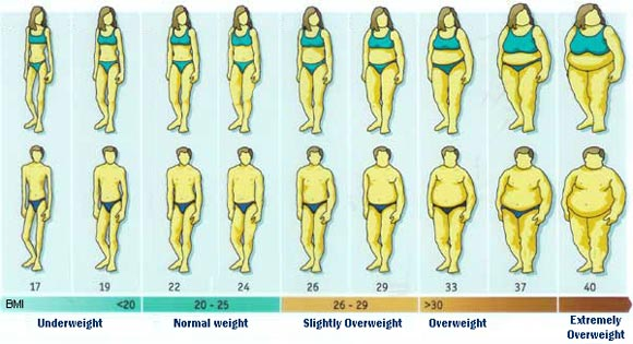 Om BMI och fettprocent c54f991061d33